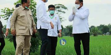 Presiden RI Joko Widodo bersama Bupati Pulang Pisau Edy Pratowo, Menhan RI Prabowo dan Mentan RI Syahrul Yasin Limpo saat mengunjungi lokasi pengembangan Food Estate di Pulang Pisau beberapa waktu lalu