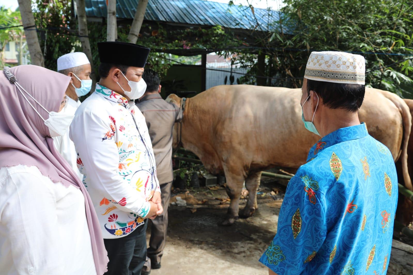 Penyerahan sapi Banpres oleh Wagub H. Edy Pratowo An. Gubernur Kalteng H. Sugianto Sabran di Kapuas