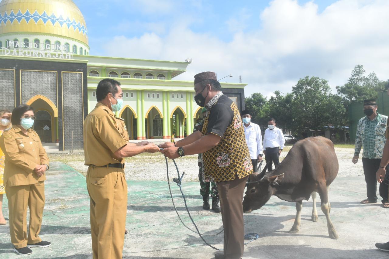 Bupati Gunung Mas, Jaya Samaya Monong saat menyerahkan bantuan hewan qurban dalam rangka peringatan Hari Raya Idul Adha 1442 H kepada Pengurus Dewan Masjid Darunnajah, Senin (19/7/2021)