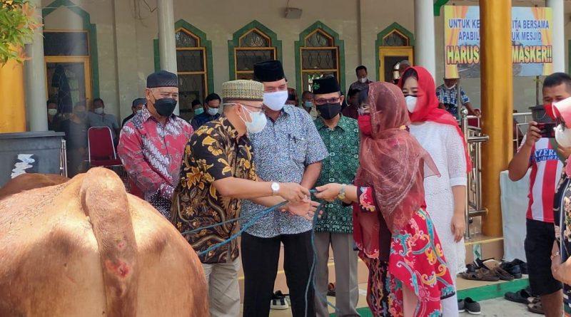 Penyaluran sapi qurban dari Pemerintah Provinsi Kalimantan Tengah untuk Pemerintah Kabupaten Barito Selatan